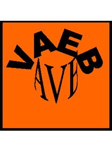 Valoriser les acquis d'une expérience bénévole (VAEB) pour un projet professionnel